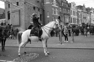 Prinsjesdag-Den-Haag-19